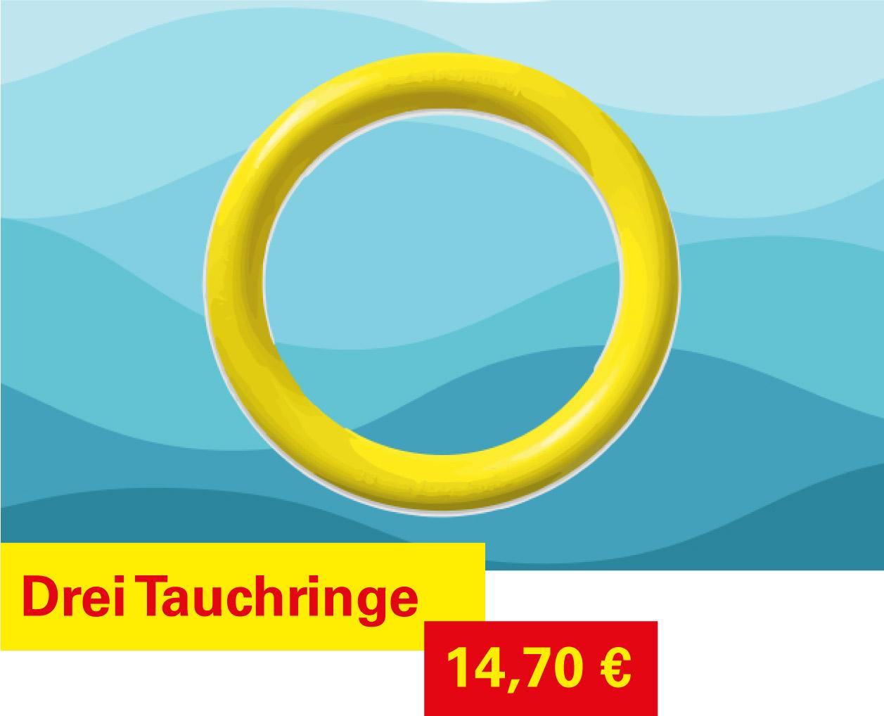 Tauchringe